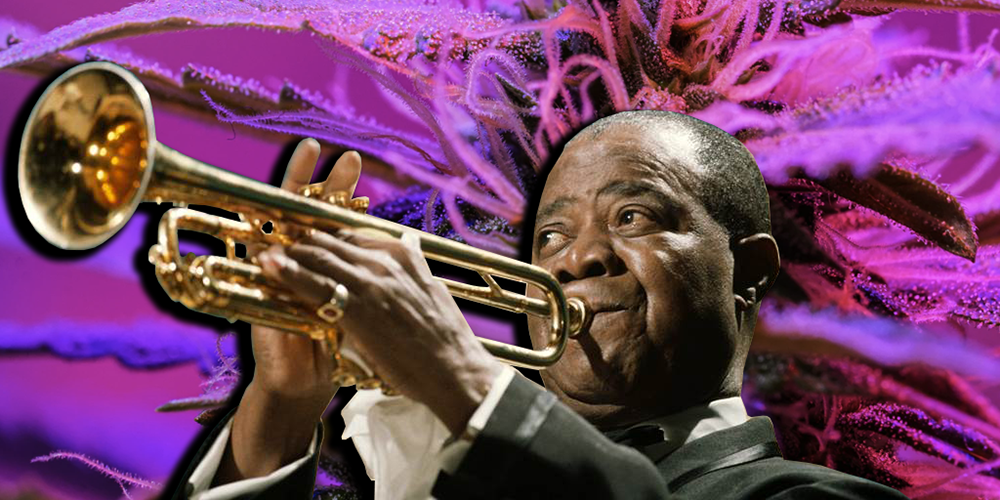 Jazz and Cannabis Banner